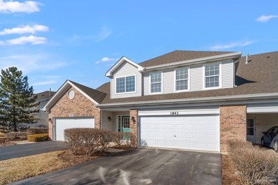 1843 Golden Gate Lane UNIT 1843, Naperville, IL 60563 - #: 10641957
