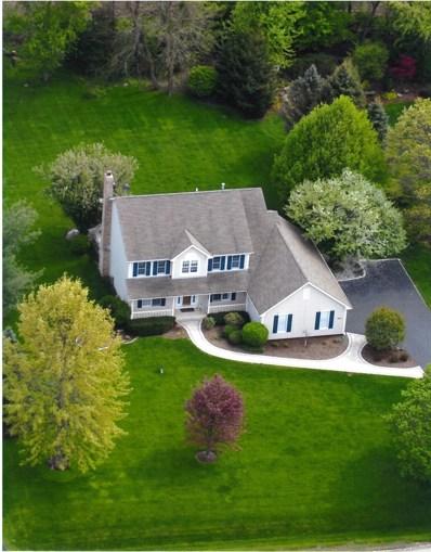 8507 Castleberry Drive, Woodstock, IL 60098 - #: 10644739