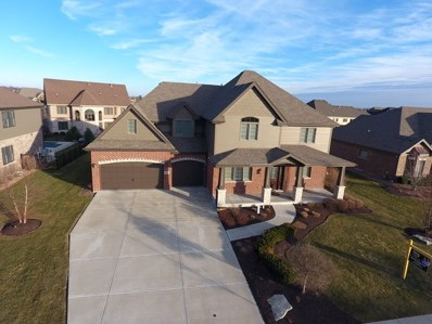 2066 Water Chase Drive, New Lenox, IL 60451 - #: 10644863