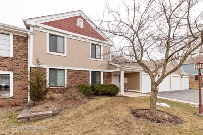 377 Sandalwood Lane UNIT D2, Schaumburg, IL 60193 - #: 10647170