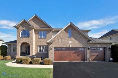 13013 Northland Drive, Plainfield, IL 60585 - #: 10648765