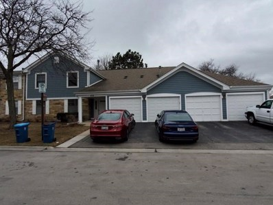 272 Elmwood Lane UNIT D1, Schaumburg, IL 60193 - #: 10649312