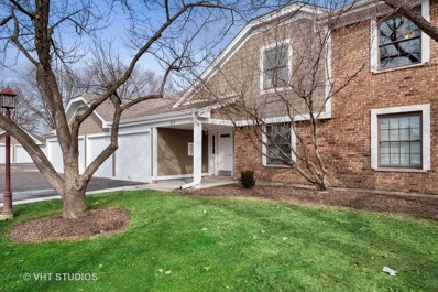 217 Oak Knoll Court UNIT B2, Schaumburg, IL 60193 - #: 10650372