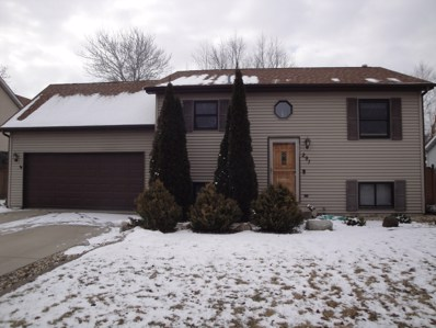 291 Partridge Run Drive, Braidwood, IL 60408 - #: 10651873