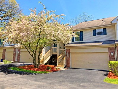 50 Samuel Drive UNIT 13-2, Streamwood, IL 60107 - #: 10652454