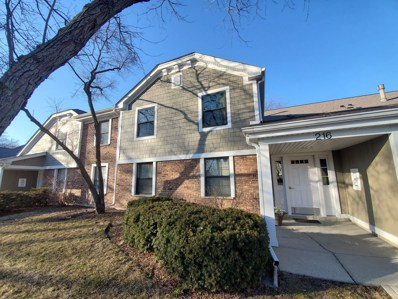 216 Deerpath Court UNIT C-2, Schaumburg, IL 60193 - #: 10654883