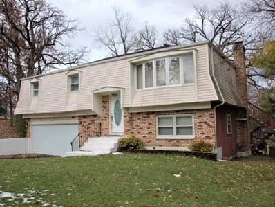 206 Indian Trail, Lake In The Hills, IL 60156 - #: 10658021