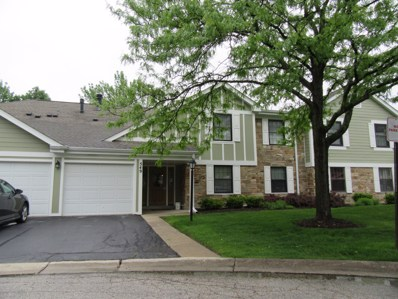 549 Williamsburg Court UNIT B1, Wheeling, IL 60090 - #: 10661190