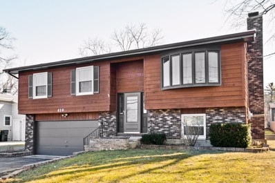 410 Crystal Lake Road, Lake In The Hills, IL 60156 - #: 10663536