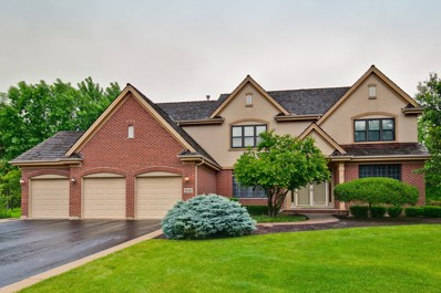 14120 W Rodmell Court, Green Oaks, IL 60048 - #: 10667314