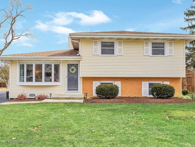 6143 Grand Avenue, Downers Grove, IL 60516 - #: 10668467