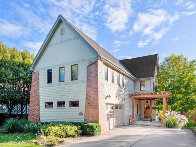 5509 Dunham Road, Downers Grove, IL 60516 - #: 10668792