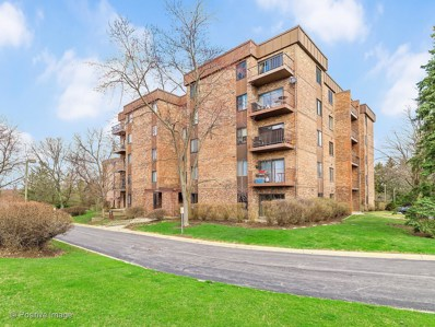420 Walnut Creek Lane UNIT 3406, Lisle, IL 60532 - #: 10668795