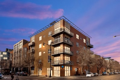 6 N May Street UNIT 302, Chicago, IL 60607 - #: 10671279