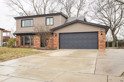 521 Redwood Lane, Schaumburg, IL 60193 - #: 10674668