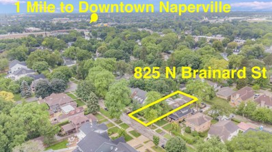825 N Brainard Street, Naperville, IL 60563 - #: 10675244