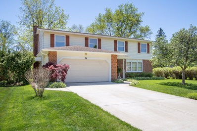 79 W King George Court, Palatine, IL 60067 - #: 10676692