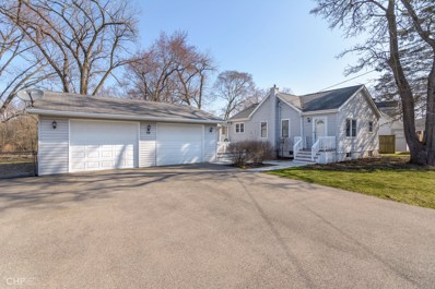 68 S Circle Avenue, Port Barrington, IL 60010 - #: 10677491