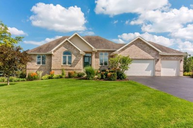 9385 E Hayrack Trail, Stillman Valley, IL 61084 - #: 201904019