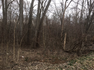 Hitzfield Street, Huntington, IN 46750 - MLS#: 201707461