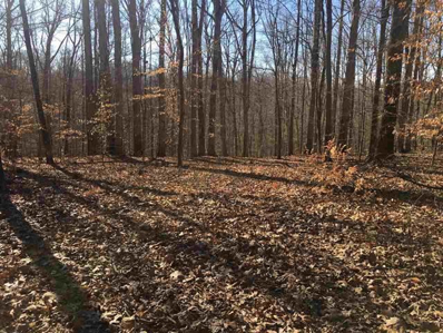 S Shady Side Dr Drive, Bloomington, IN 47401 - MLS#: 201811762