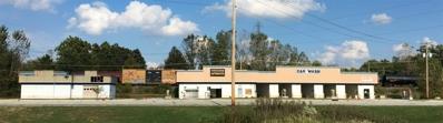 3542 S Main, Elkhart, IN 46517 - #: 201848083