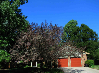 3331 Countrydale, Fort Wayne, IN 46815 - #: 202033476