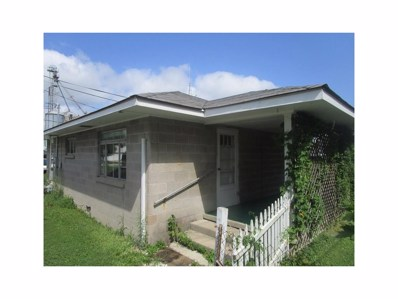 718 S Ford Street, Lapel, IN 46051 - #: 21502059
