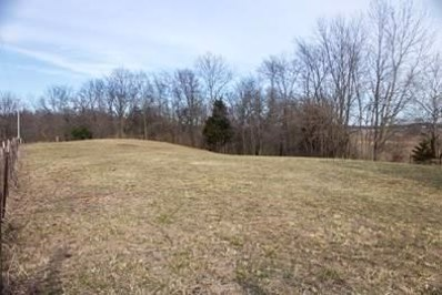 0 N Brandywine Road, Shelbyville, IN 46176 - MLS#: 21547778