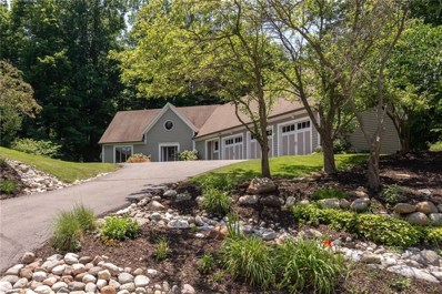 10607 Hunters Cove Drive, Indianapolis, IN 46236 - #: 21577184