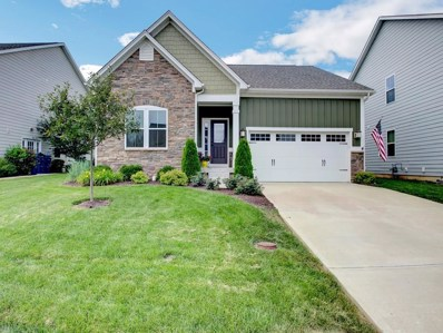 12258 Hawks Nest Dr, Fishers, IN 46037 - #: 21578534