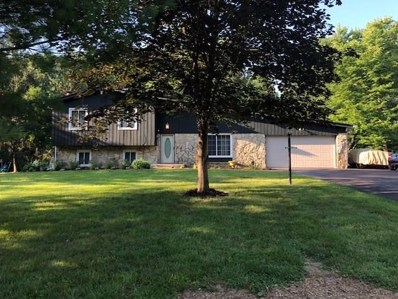 3441 Ellyn Drive, Indianapolis, IN 46228 - #: 21581708