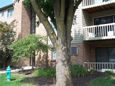 4291 Village Parkway Circle W UNIT 12, Indianapolis, IN 46254 - #: 21591741