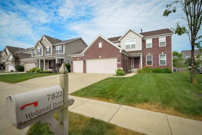 7822 Wedgetail Drive, Zionsville, IN 46077 - #: 21650369