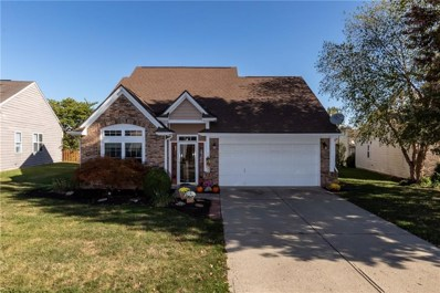 11052 Palatka Court, Indianapolis, IN 46236 - #: 21675013