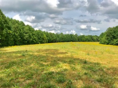 Wise Road, Campbellsville, KY 42718 - MLS#: 10043804