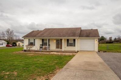 33 Gray Hawk Rd, Hustonville, KY 40437 - #: 1826801