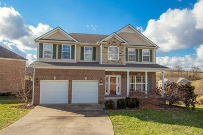 325 Payne Drive, Richmond, KY 40475 - #: 1900329