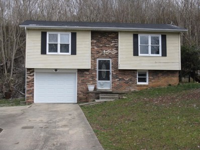 40 Ford Drive Ext, Mt Vernon, KY 40456 - #: 1904274