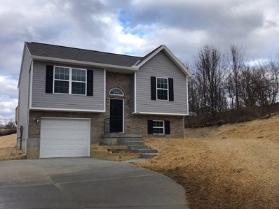 9834 Codyview Drive UNIT LOT 1, Independence, KY 41051 - #: 518471