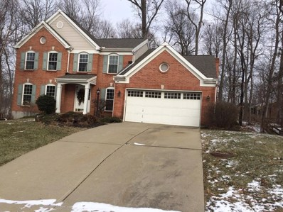 1882 Grovepointe, Florence, KY 41042 - #: 522016