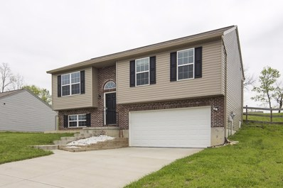 6366 Waterview Way, Independence, KY 41051 - #: 526144
