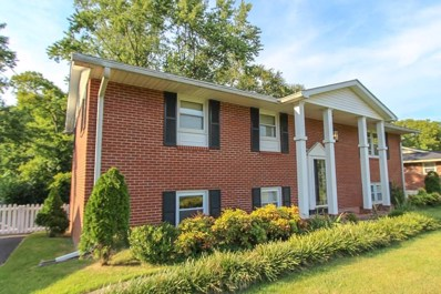 625 Wakefield St, Bowling Green, KY 42103 - #: 20193879