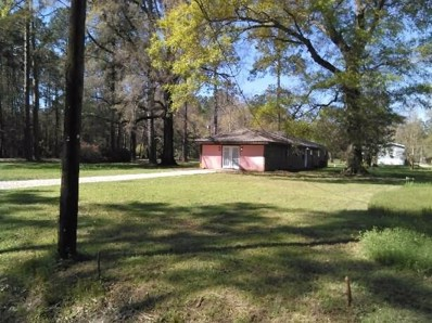 22115 Fletcher Road, Ponchatoula, LA 70454 - MLS#: 2107635