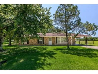 107 Charles Sinagra Avenue, Independence, LA 70443 - MLS#: 2124602