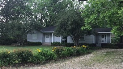 183 Highway 40 East, Independence, LA 70443 - MLS#: 2132970