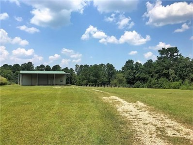 22111 40 Highway, Bush, LA 70431 - #: 2166775