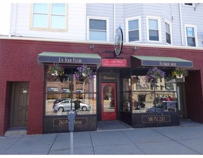 263 Park Ave, Worcester, MA 01609 - #: 72332018