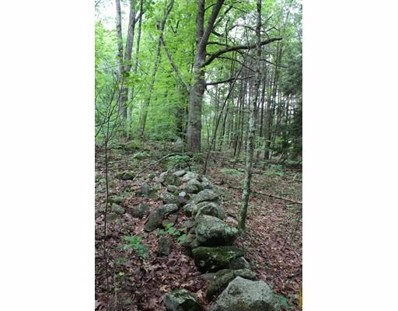 Lot 4C Healdville Rd, Hubbardston, MA 01452 - #: 72341276