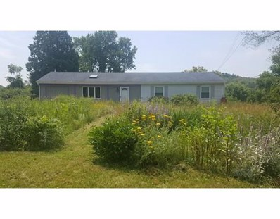 103 Mill Lane, Amherst, MA 01002 - #: 72362163